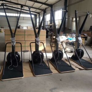 Ski Machine With Stand Free Shipping 3 Weeks 679 99